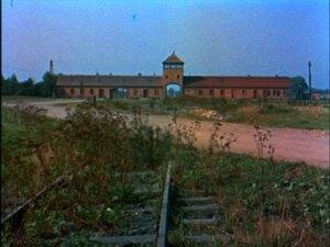 Auschwitz 1955